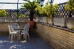 Pulizia Balconi, Terrazze e Verande : (Seveso)