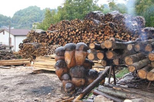 Azienda boschiva cerquozzi lariano for Legna da ardere prezzi
