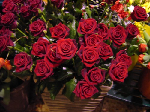 Awesome MAZZO SPECIALE CON 101 ROSE ROSSE