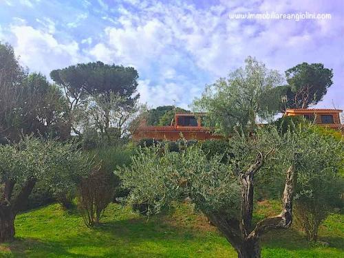 Vendita immobili e ville con giardino a roma via di for Ville in vendita appia antica