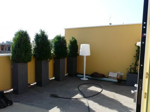 Progettazione giardini pensili : (San Giovanni in Persiceto)