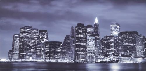 Stampa su tela new york venaria reale for Apice arredamenti