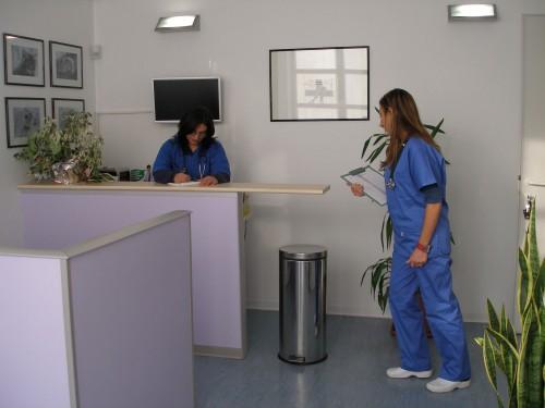 clinica veterinaria grugliasco pronto soccorso parma - photo#21