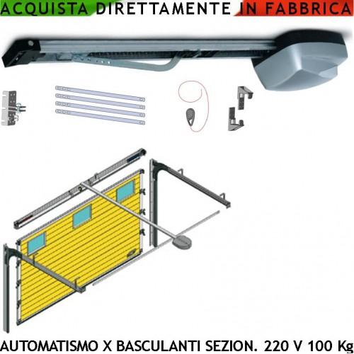 Porta sezionale kit automatismo da soffitto elettrico 100 kg 220 v roma - Serranda elettrica casa ...