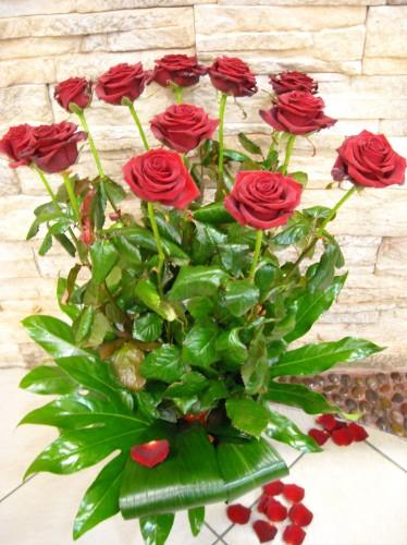 spesso Mazzo di Rose rosse : (Gaeta) NM75