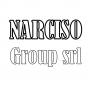 Logo Narciso Group Srl